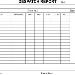 DISPATCH REPORT BOOK
