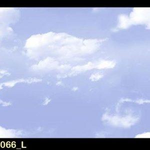 RC 2066 L