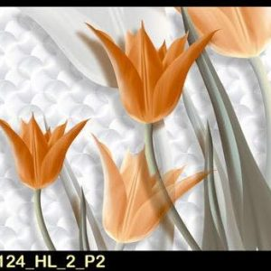 RC 2124 HL 2 P2