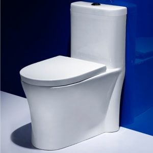 CF CN SHBISA 823 CONJOINED TOILET 5