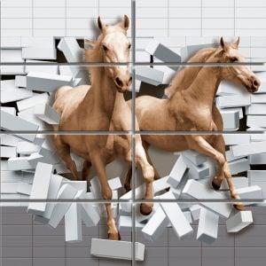 CF RANGE GLSY POS HORSER P 12 X 24