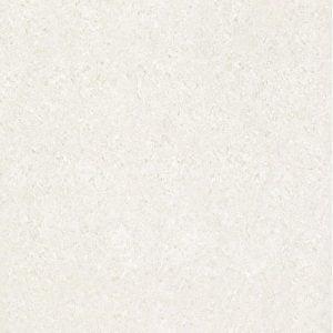CF SEGAM DC TIGER WHITE 800 X 800
